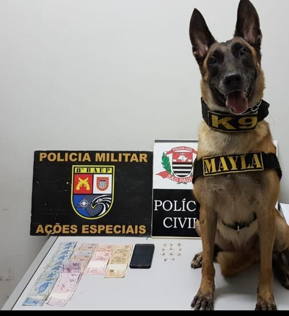 """Polícia Civil - Cão de faro apontou locais com """"forte odor de droga"""""""