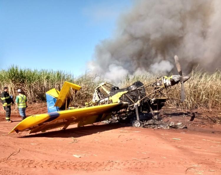Reprodução/WhatsApp - Avião ficou abandonado após a queda em canavial