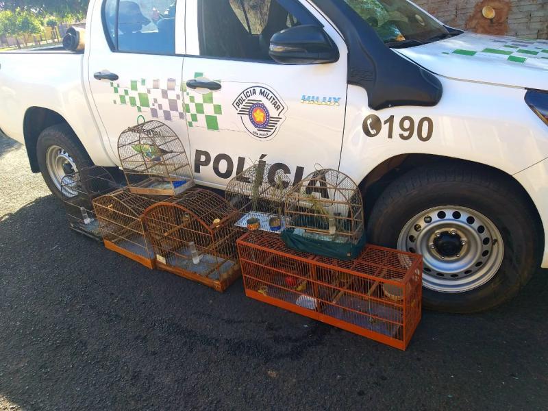 Cedida | Fiscalização ocorreu no município de Rancharia