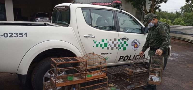 Polícia Militar Ambiental - Operação Meio Ambiente ocorreu em diversas cidades da região