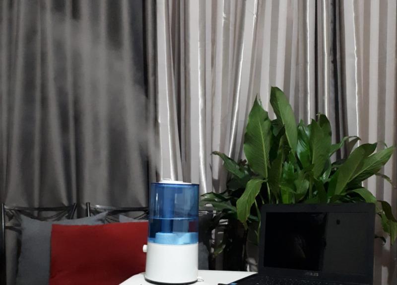 Oslaine Silva - Umidificador de ar é uma alternativa nestes dias em que a umidade do ar é mais baixa