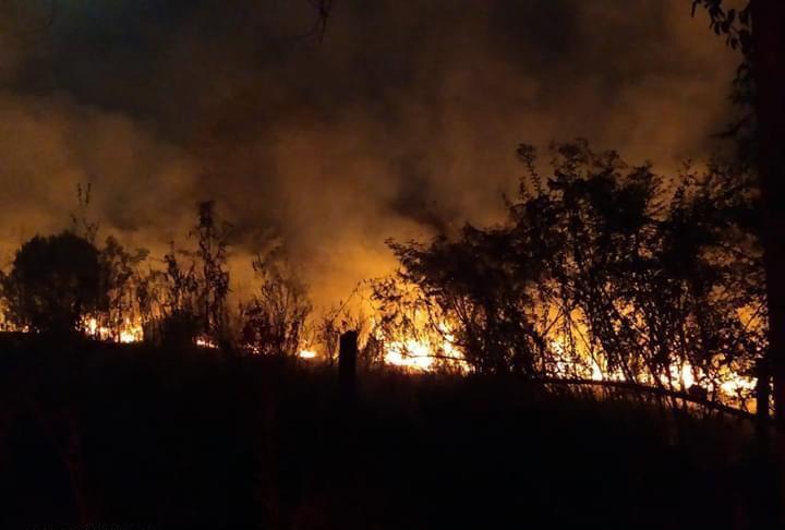 Defesa Civil - Foram duas horas de trabalho para combater o fogo