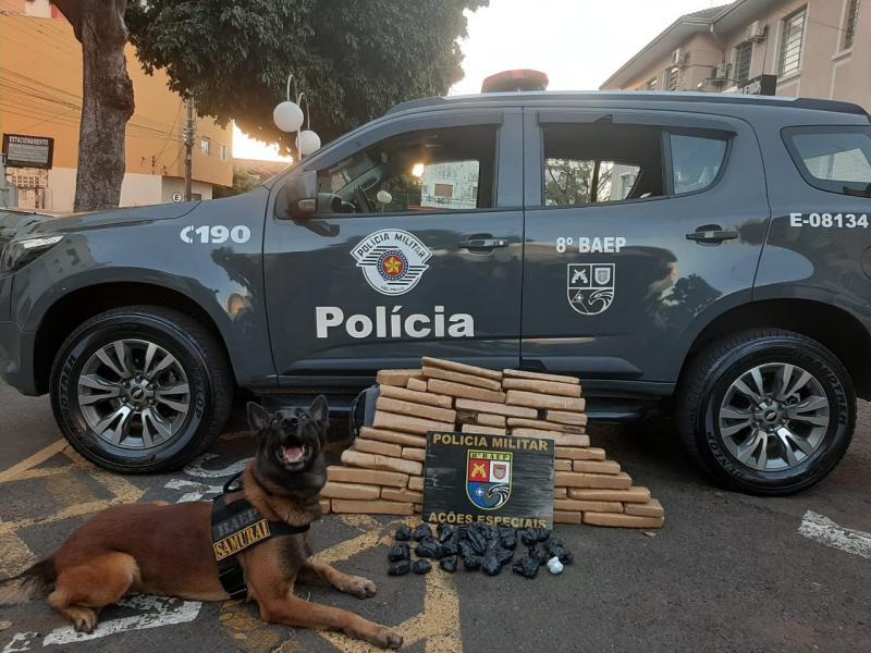 Polícia Militar - Denúncias levaram os policiais ao endereço do acusado