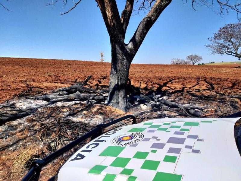 Polícia Militar Ambiental - Área degradada está sendo preparada para o cultivo de mandioca