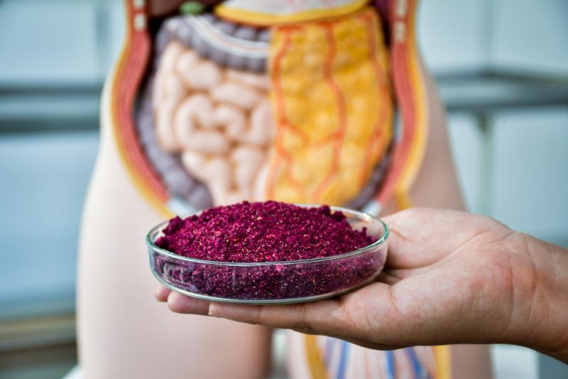 Foto: Gabriela Oliveira - Inclusão da farinha da pitaya rosa na dieta ajuda na proteção da mucosa intestinal e na redução dos sintomas da colite ulcerativa