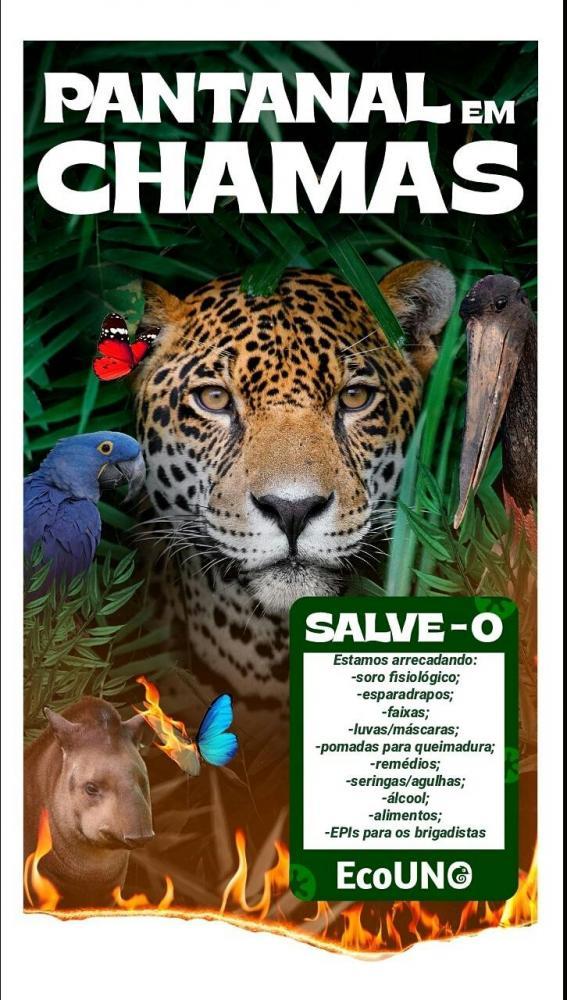 Cedida - Cartaz da campanha do EcoUno, produzido pelos discentes da Unoeste