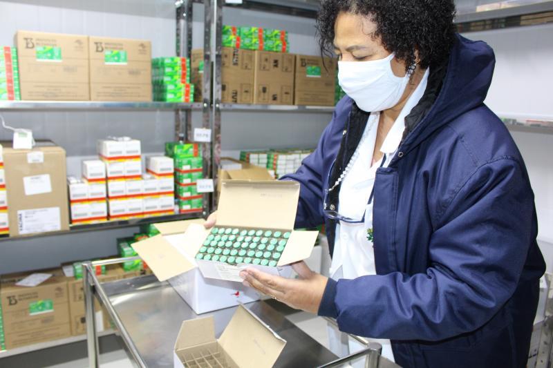 Imunizantes ficarão acondicionados na Rede de Frio da Sesau