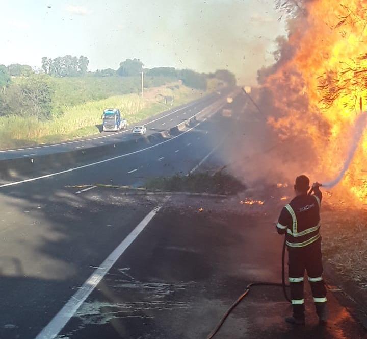 Uma das principais causas de queimadas se dá durante o lançamento de bitucas de cigarros pelas janelas dos veículos sobre a vegetação seca
