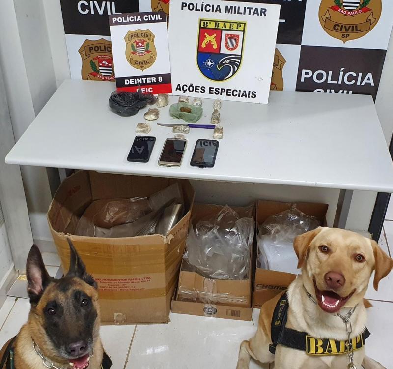 Ação contou com apoio de cães da faro pertencentes ao Canil do 8º Baep