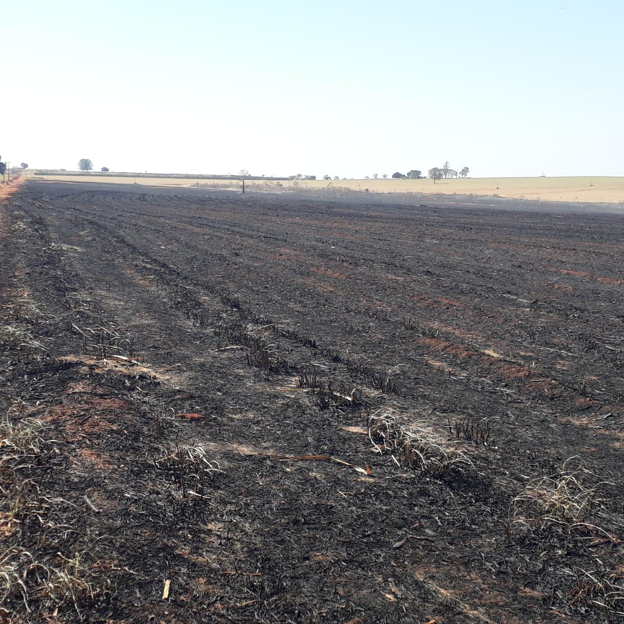 Focos de incêndio atingiram áreas agropastoris e de preservação permanente