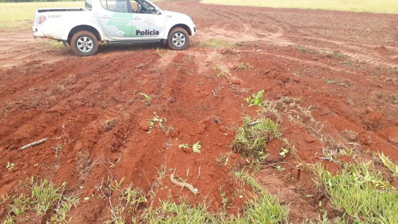 Polícia Militar Ambiental - Retiradas ocorreram em área que era considerada de pastagem