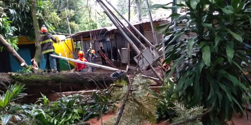 José Reis - 25 clientes ficaram sem energia devido ao rompimento de cabos