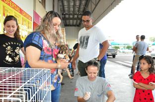 José Reis  - Ao todo, 15 animais foram colocados para adoção entre cães e gatos