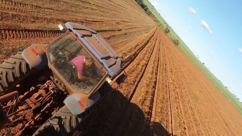 Arquivo - Atividade agropecuária teve o melhor desempenho, com saldo de 16 vagas de emprego