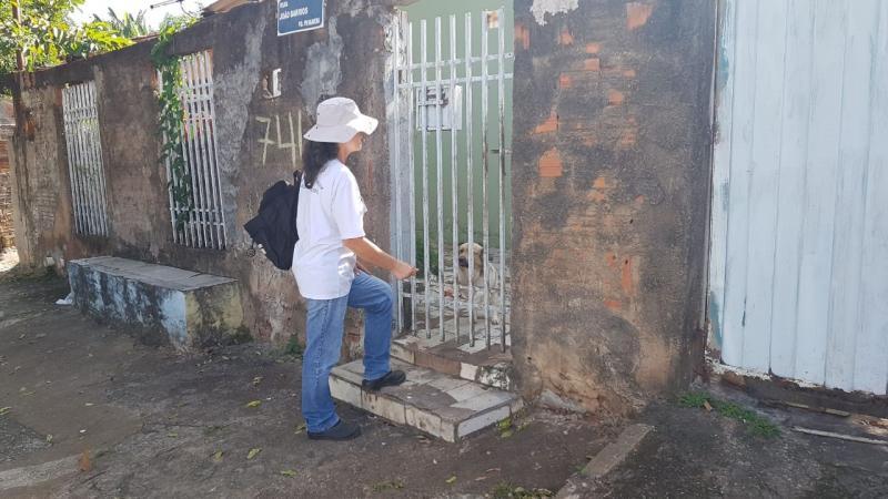 Vigilância Epidemiológica:Técnicos percorreram ruas com orientações e recolhimento