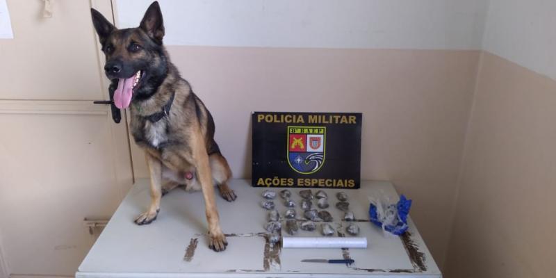 Polícia Militar -Porções de maconha estavam em uma lata, dentro de imóvel