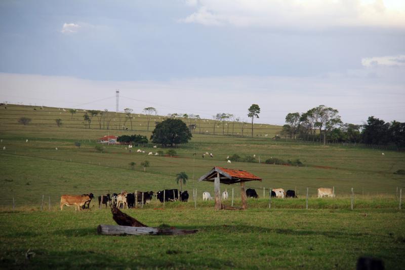Arquivo -  Declaração é obrigatória a qualquer pessoa dona ou possuidora de título de imóvel rural