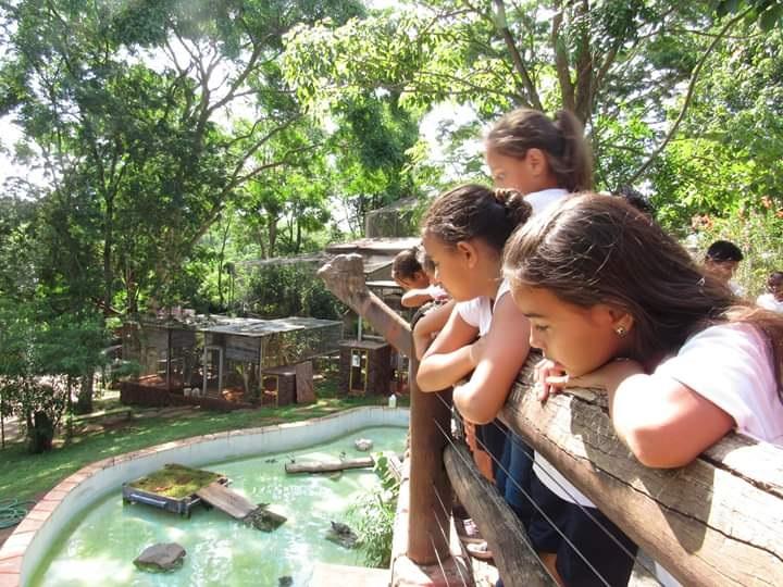 Cedida/Cidade da Criança - Em 2018, parques aquático e ecológico receberam 17.795 pessoas em 360 excursões; visitas ocorrem de terça a domingo