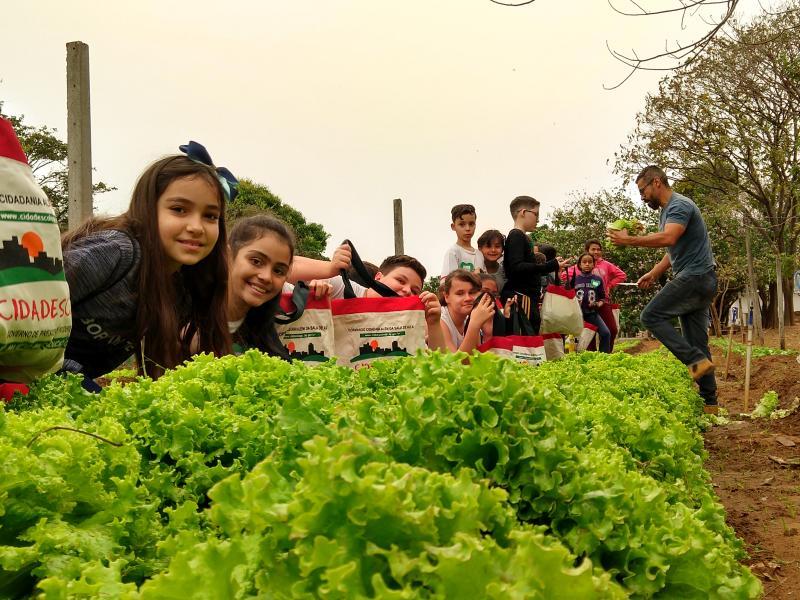 Pedro Silva - Alunos do Cidadescola participam ontem de várias atividades, uma delasna Horta Municipal