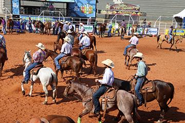 José Reis - Ontem, cavaleiros e cowboys marcaram presença na arena
