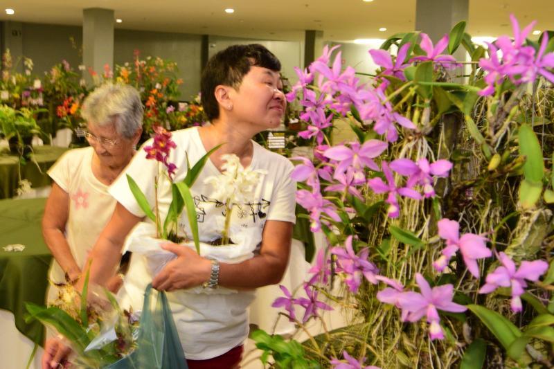 Paulo Miguel: Amantes de flores e natureza aproveitam evento para aumentar apreciar orquídeas