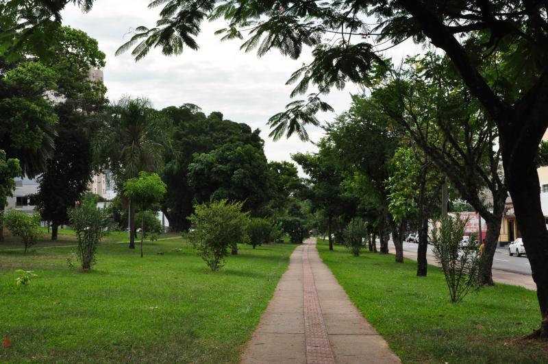 José Reis -   Prudente tem aproximadamente 220 mil árvores, divididas entre 85 espécies arbóreas e arbustivas; muitas estão em praças que estão sendo urbanizadas