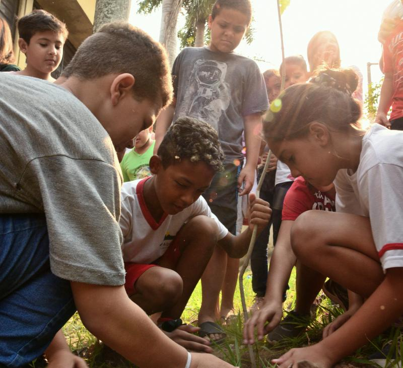 Paulo Miguel - Primeira muda, ontem, foi plantada na frente da escola; árvore é da espécie ipê roxa