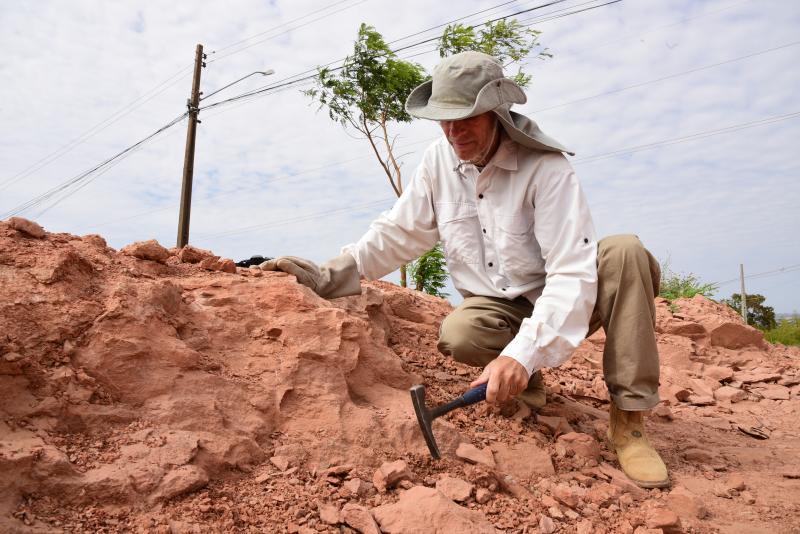 Paulo Miguel:William encontrou fósseis de um grupo primitivo de aves em PP