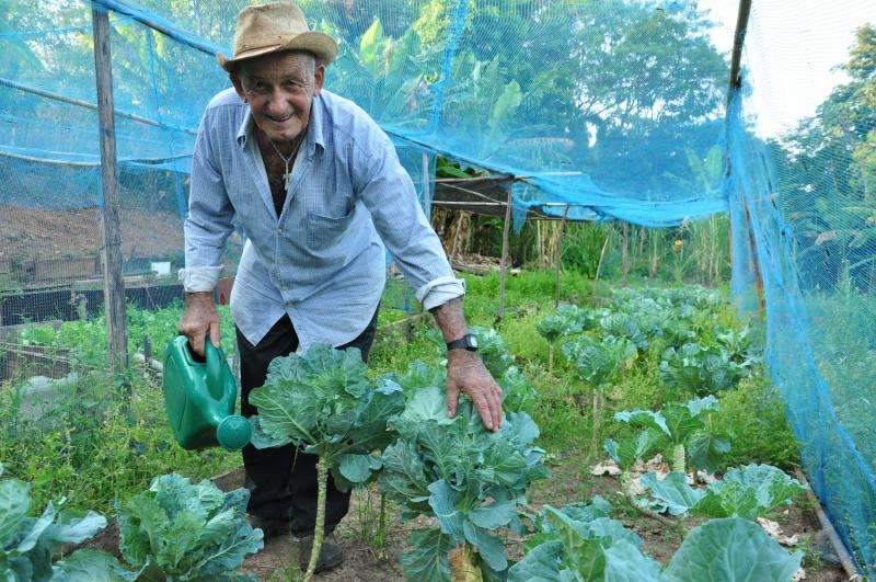 José Reis - Projeto estimula na comunidade local o cuidado com as áreas públicas