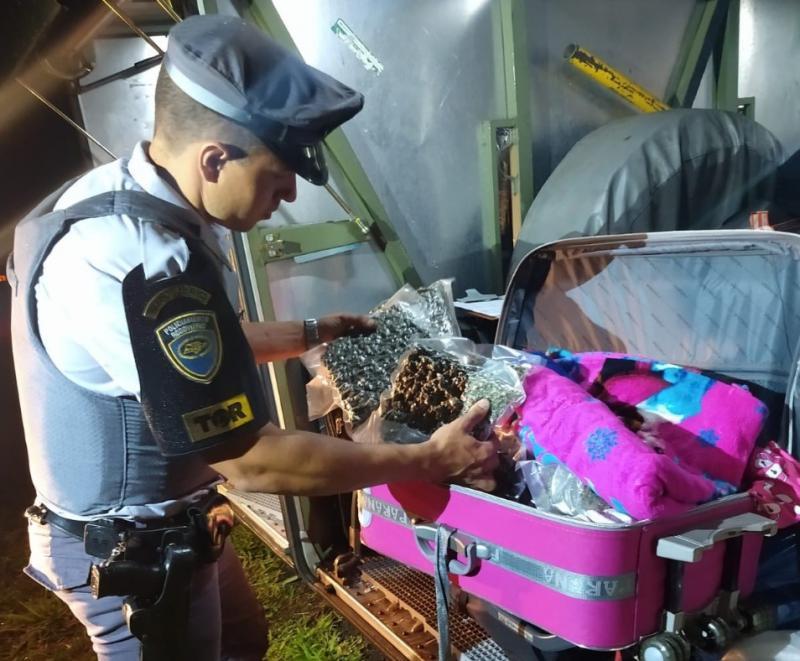 Polícia Militar Rodoviária - Entorpecente estava escondido dentro de uma mala
