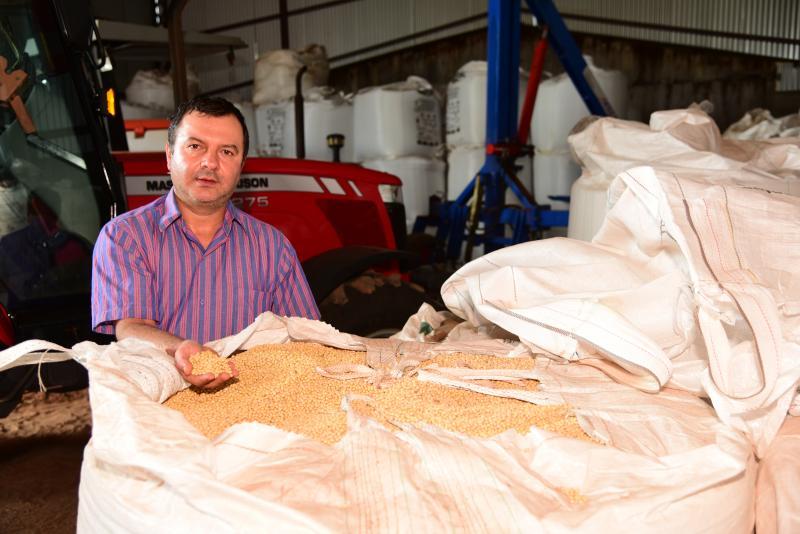 Paulo Miguel - Alexandre Casaca, agrônomo, afirma que os impactos na produtividade da safrinha são inevitáveis
