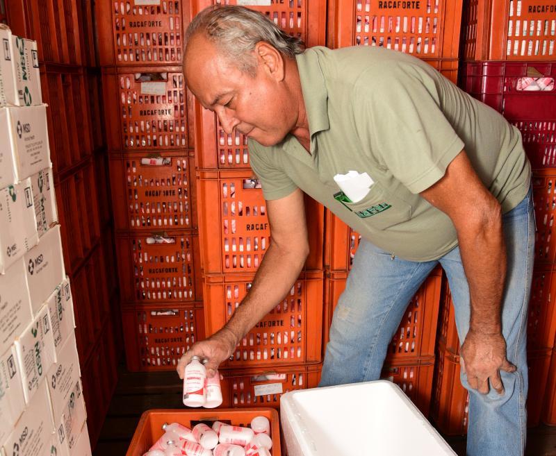 Paulo Miguel - Estoques de casas agropecuárias estão abastecidos de vacinas