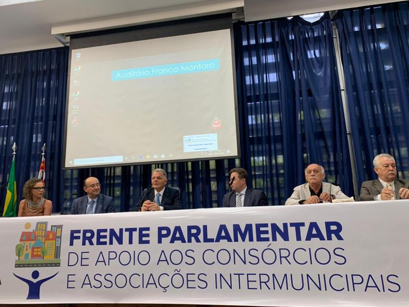 Cedida - Seminário ocorreu na Assembleia Legislativa de São Paulo