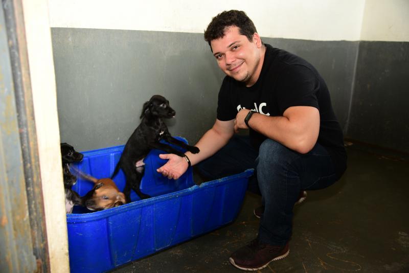 Paulo Miguel - Caso donos dos animais não sejam encontrados pelo CCZ, animais são colocados para adoção