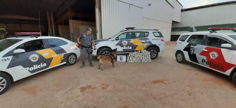 """Foto: Polícia Militar - Droga detectada pelo cão """"bom de faro"""" estava em fundo falso do semirreboque"""