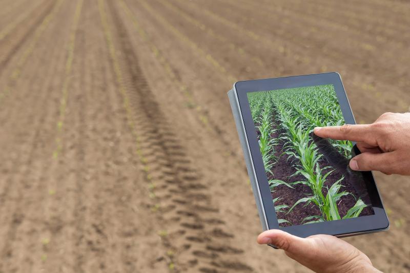 Divulgação/Unoeste - Profissional da área também verifica possibilidades de gerar vantagens para a agricultura