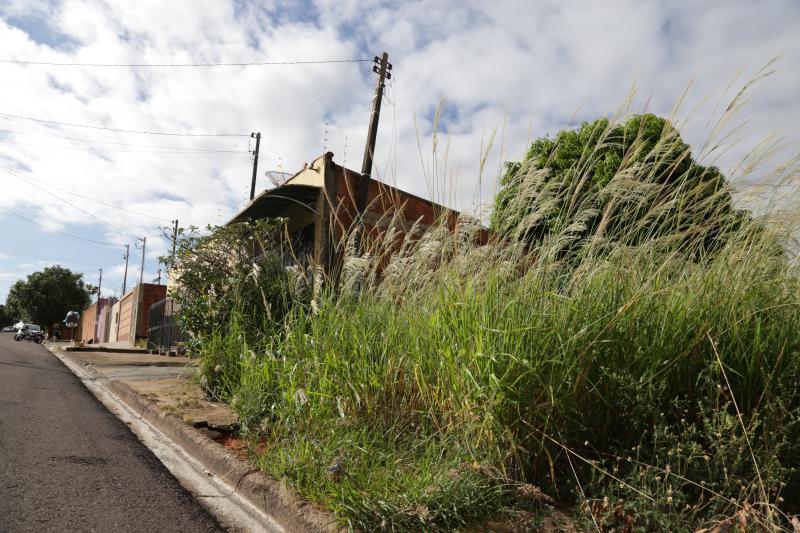 Isadora Crivelli - Casas estão muito próximas aos terrenos em situação de abandono