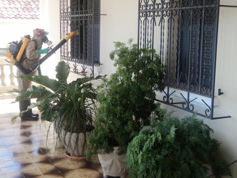 Arquivo - Estado iniciou distribuição de inseticidas para aplicação nos municípios