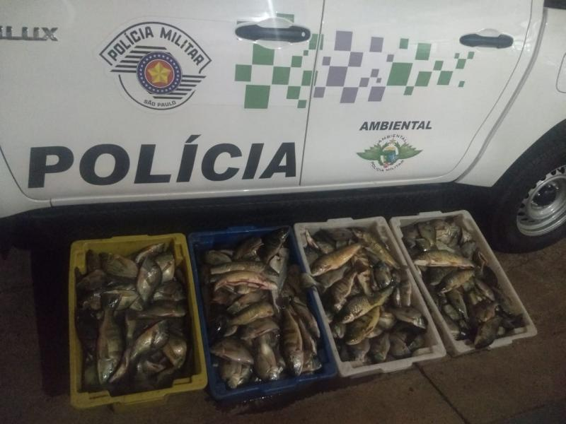 Cedida: Policiais apreenderam pescado em Panorama