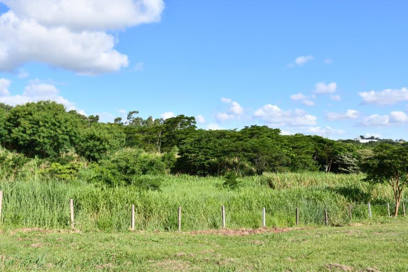 Secom - Parque Municipal dos Ipês fica em uma área de mais de 14 hectares, na SP-270