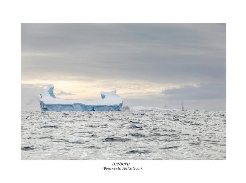 Reprodução/Adriano Kirihara - Sobre a Antártida, Adriano destaca que é um sonho poder conhecer aquele local