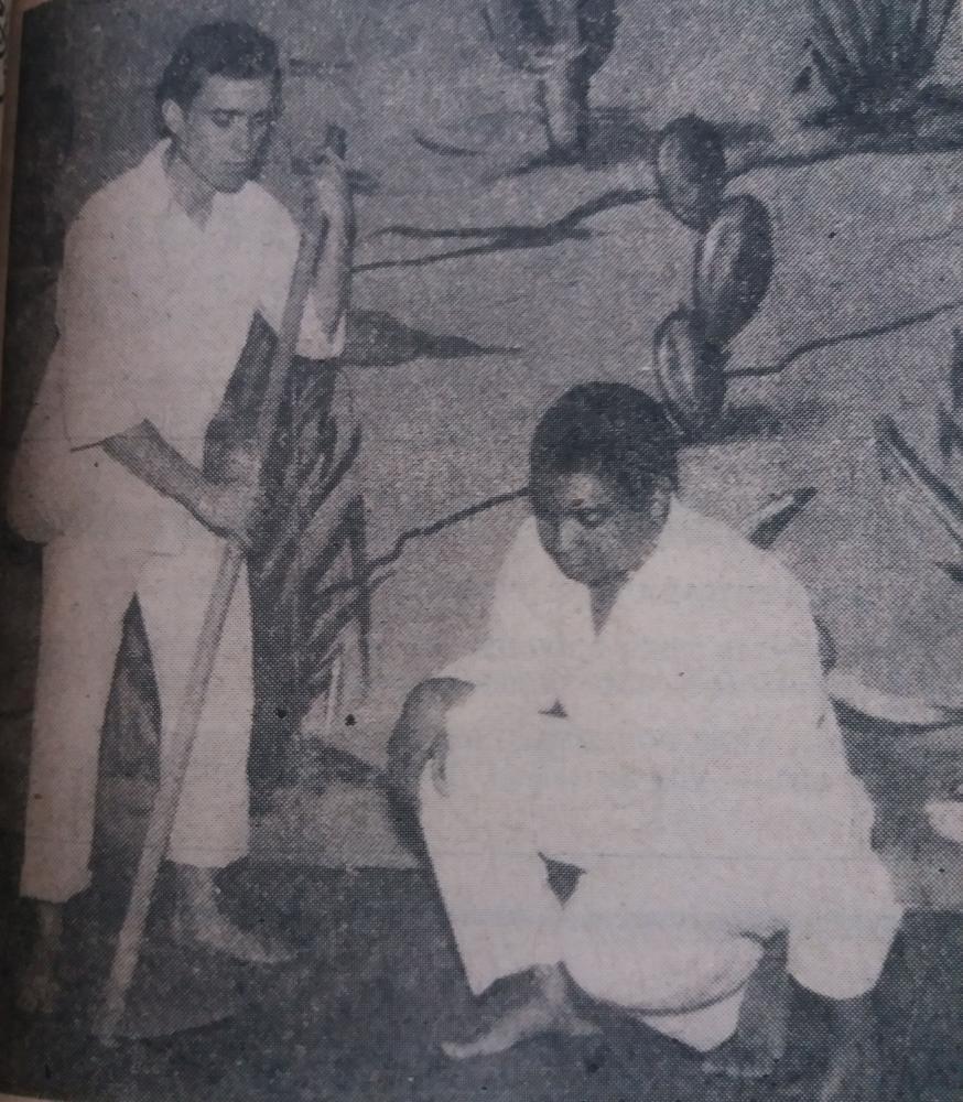 Laerte Silva e Paulo Roberto Lisboa