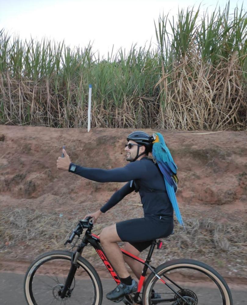 Arara ciclista Flórida Paulista Prudente