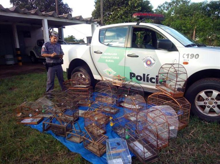Polícia Militar Ambiental |No total, 26 pássaros foram aprendidos nos locais fiscalizados