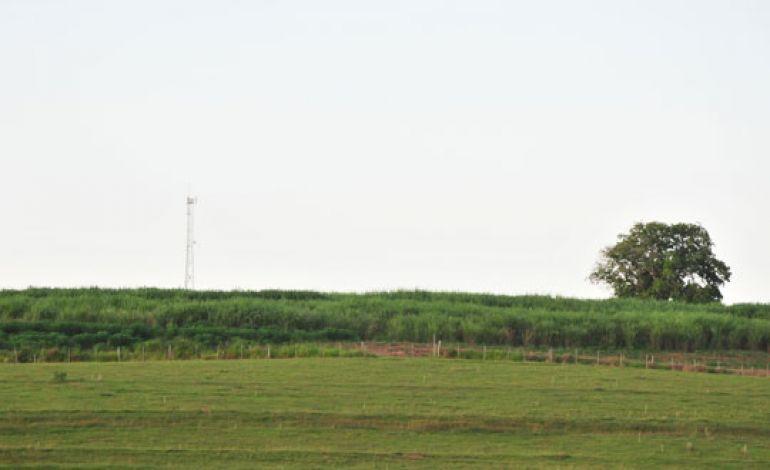 Marcio Oliveira, Safra 2017/2018 encerrou com a colheita total de 22.918.478 toneladas de cana-de-açúcar