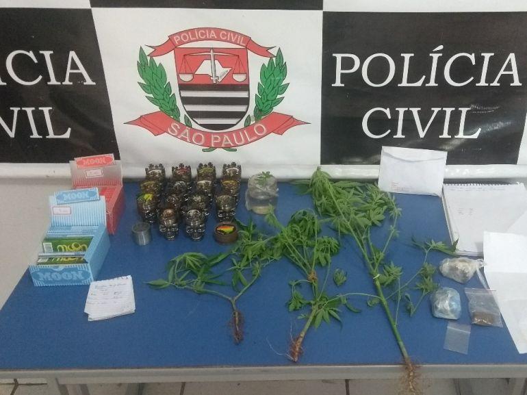 Polícia Militar - Civil apreendeu porções de maconha, bem como sementes e pés da droga