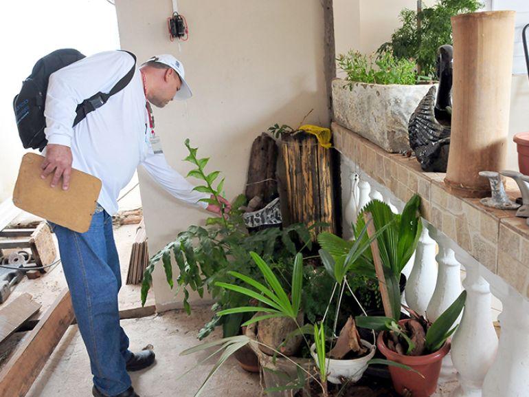 Arquivo - Bloqueio de criadouros visa eliminar focos do Aedes
