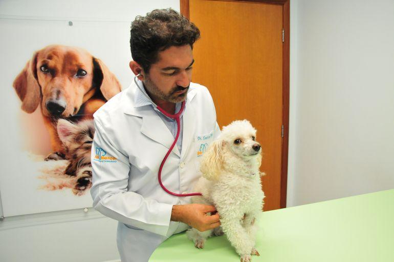 Marcio Oliveira - Veterinário Emerson orienta avaliação clínica no pet antes da viagem