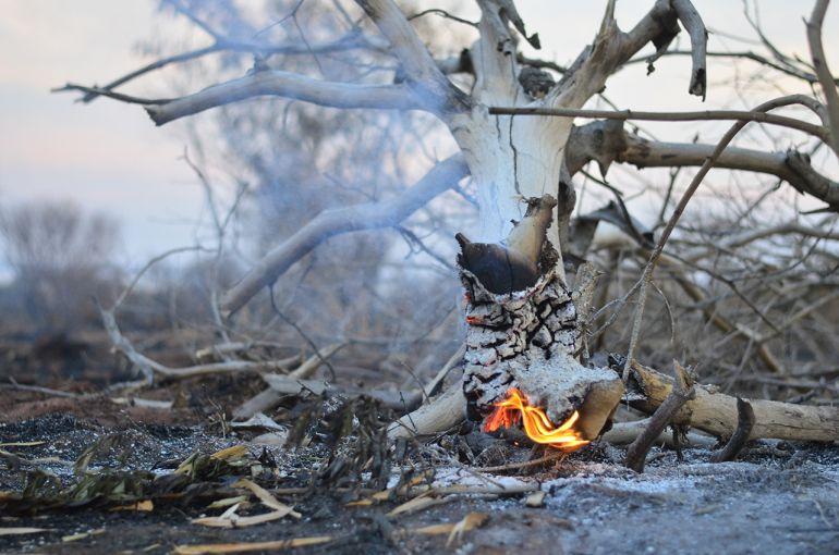 Roberto Mancuzo/Cedida - Alguns focos de incêndio ainda eram encontrados nesta semana