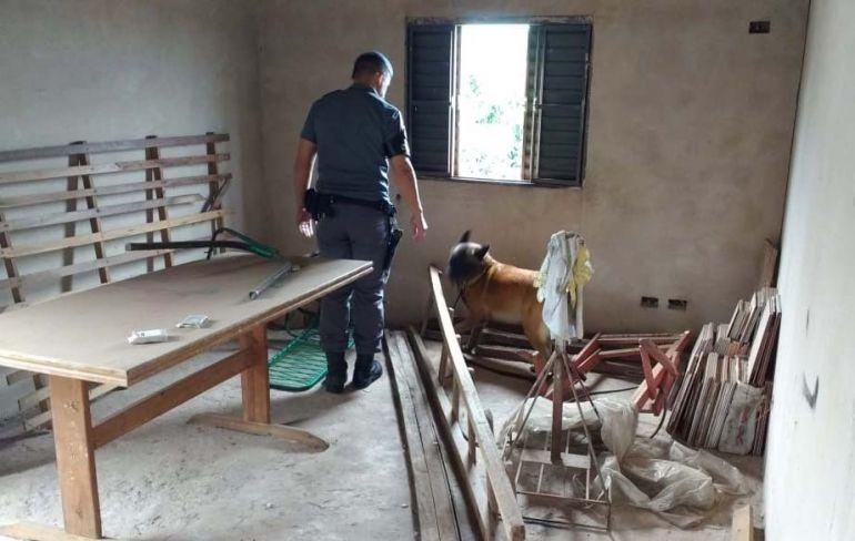 Polícia Militar - Ação em residência contou com o apoio do Canil da Força Tática